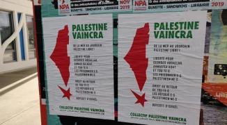 toulouse-palestine2.jpg