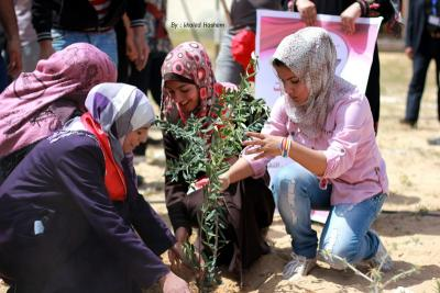 فعاليات جبهة العمل في جامعات غزة _ تصوير خالد ابو الجديان (29084563) 