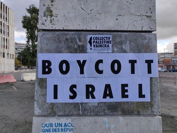 toulouse-palestine4.jpg