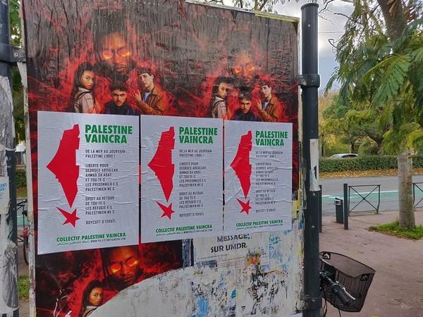 toulouse-palestine3.jpg